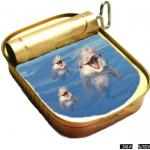 דולפינים בקופסא