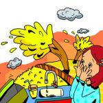 צבי אורגד - חלום בלהות אקולוגי